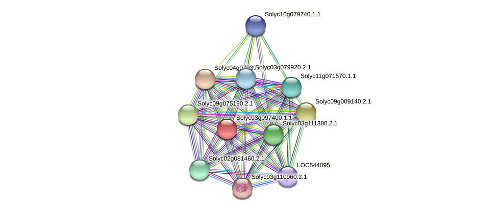 Solyc03g097400.1.1 protein (Solanum lycopersicum) - STRING interaction network