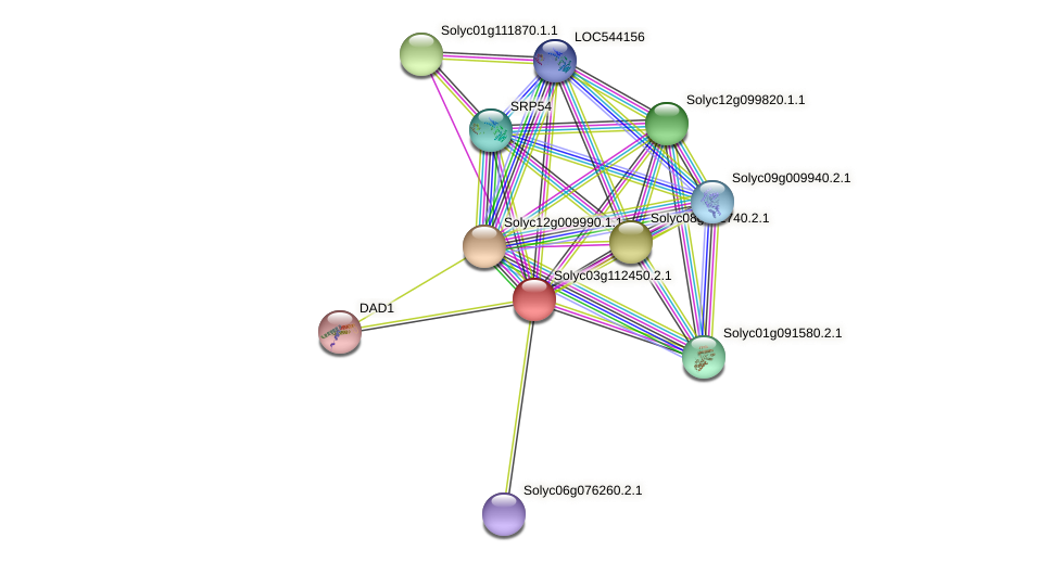 Solyc03g112450.2.1 protein (Solanum lycopersicum) - STRING interaction network