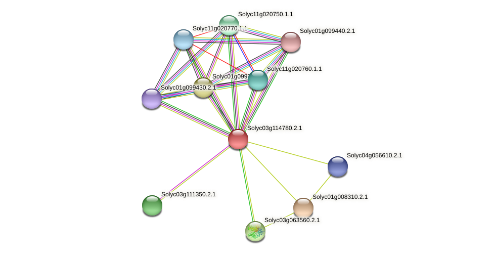 Solyc03g114780.2.1 protein (Solanum lycopersicum) - STRING interaction network