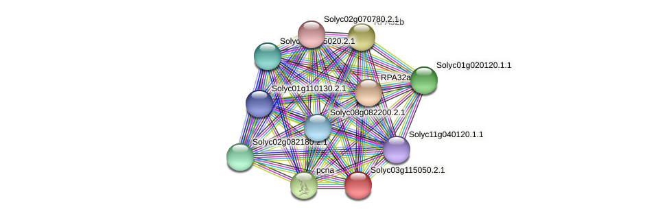 101255870 protein (Solanum lycopersicum) - STRING interaction network