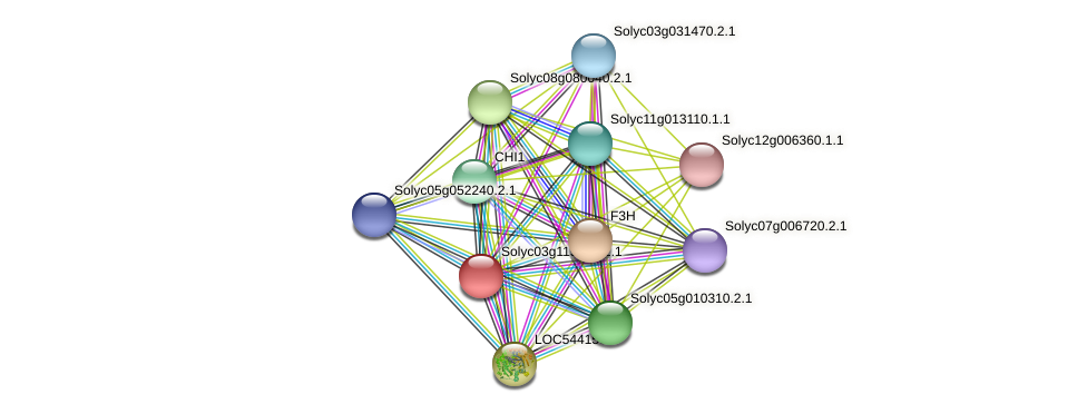 Solyc03g115220.2.1 protein (Solanum lycopersicum) - STRING interaction network
