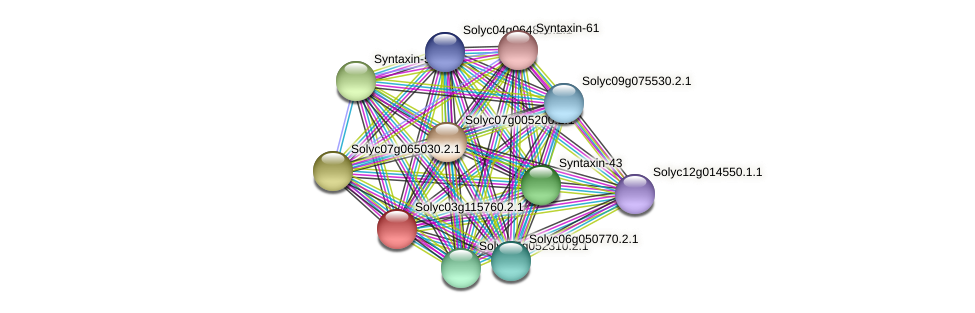 101266321 protein (Solanum lycopersicum) - STRING interaction network