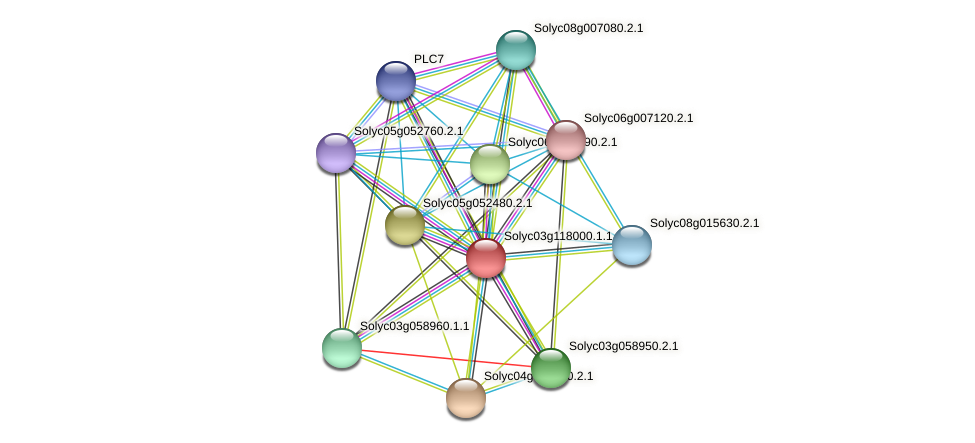 Solyc03g118000.1.1 protein (Solanum lycopersicum) - STRING interaction network