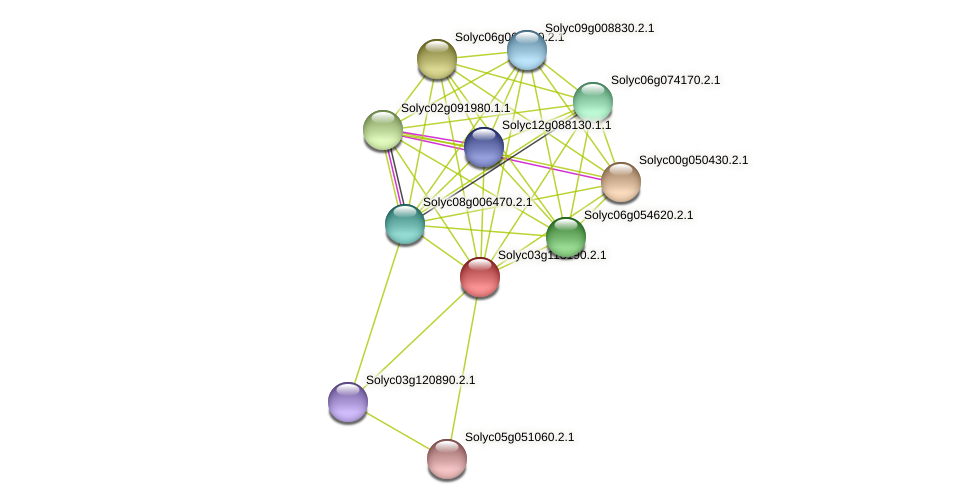 Solyc03g118190.2.1 protein (Solanum lycopersicum) - STRING interaction network