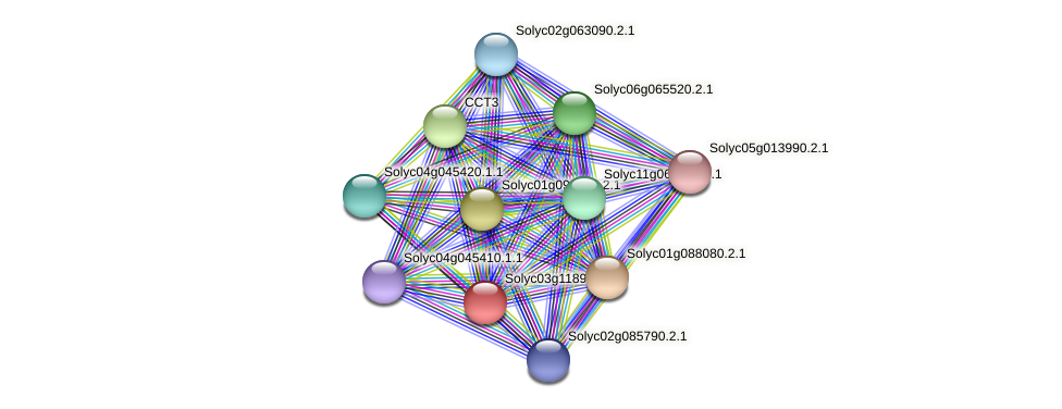 Solyc03g118910.1.1 protein (Solanum lycopersicum) - STRING interaction network