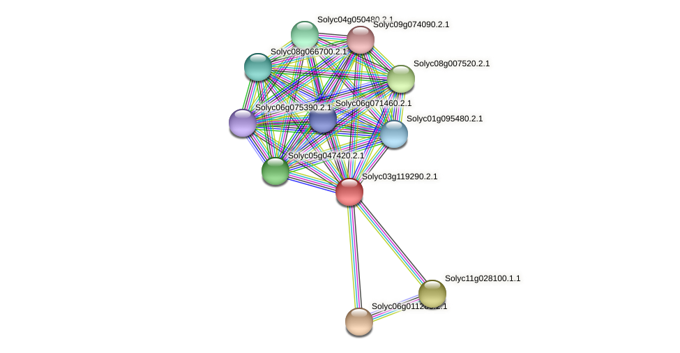 Solyc03g119290.2.1 protein (Solanum lycopersicum) - STRING interaction network