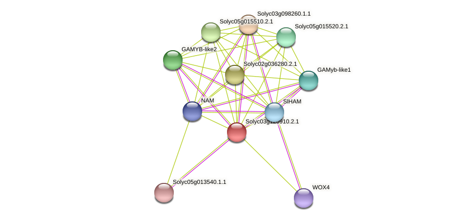 Solyc03g120910.2.1 protein (Solanum lycopersicum) - STRING interaction network