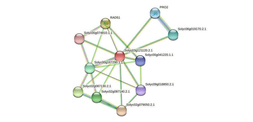 Solyc03g121120.2.1 protein (Solanum lycopersicum) - STRING interaction network
