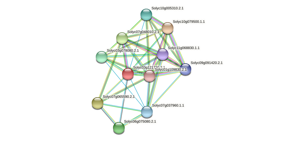 Solyc03g121730.2.1 protein (Solanum lycopersicum) - STRING interaction network