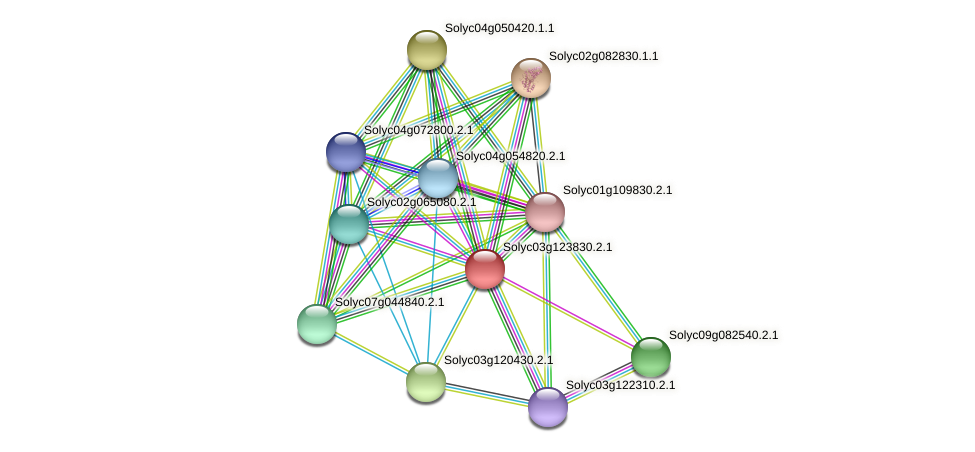 101266918 protein (Solanum lycopersicum) - STRING interaction network