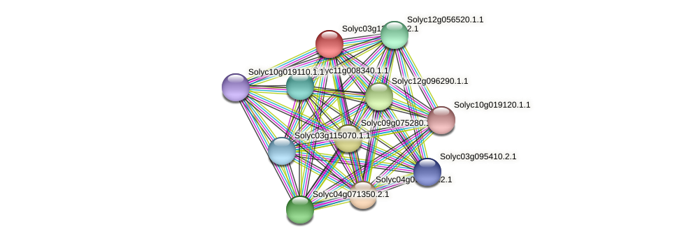101266009 protein (Solanum lycopersicum) - STRING interaction network