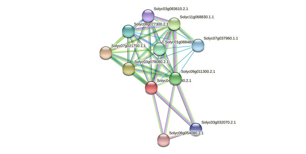 Solyc04g005140.2.1 protein (Solanum lycopersicum) - STRING interaction network