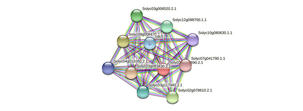 Solyc04g005690.2.1 protein (Solanum lycopersicum) - STRING interaction network
