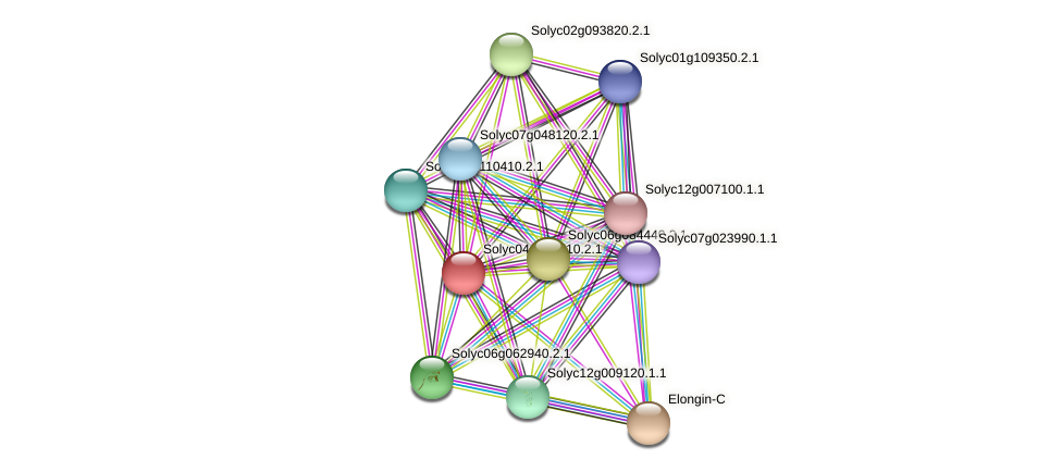 Solyc04g008510.2.1 protein (Solanum lycopersicum) - STRING interaction network