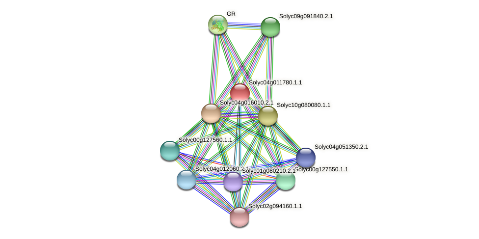 Solyc04g011780.1.1 protein (Solanum lycopersicum) - STRING interaction network