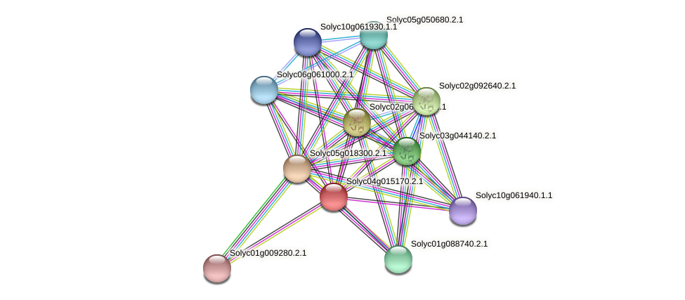 Solyc04g015170.2.1 protein (Solanum lycopersicum) - STRING interaction network