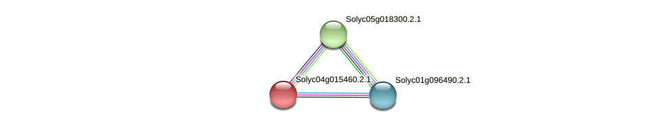 Solyc04g015460.2.1 protein (Solanum lycopersicum) - STRING interaction network