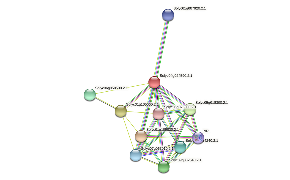 Solyc04g024590.2.1 protein (Solanum lycopersicum) - STRING interaction network
