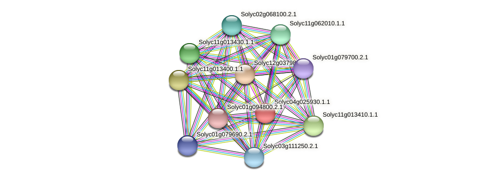 Solyc04g025930.1.1 protein (Solanum lycopersicum) - STRING interaction network