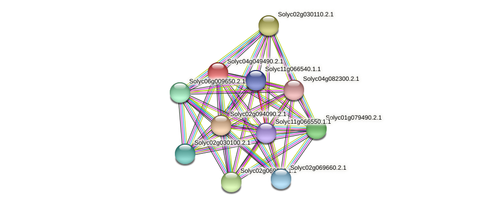 Solyc04g049490.2.1 protein (Solanum lycopersicum) - STRING interaction network