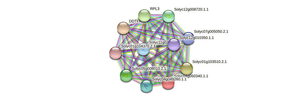 Solyc04g050340.1.1 protein (Solanum lycopersicum) - STRING interaction network