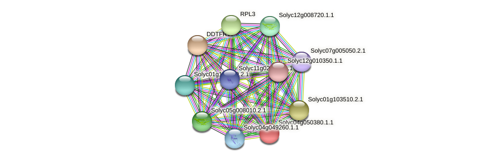 Solyc04g050380.1.1 protein (Solanum lycopersicum) - STRING interaction network
