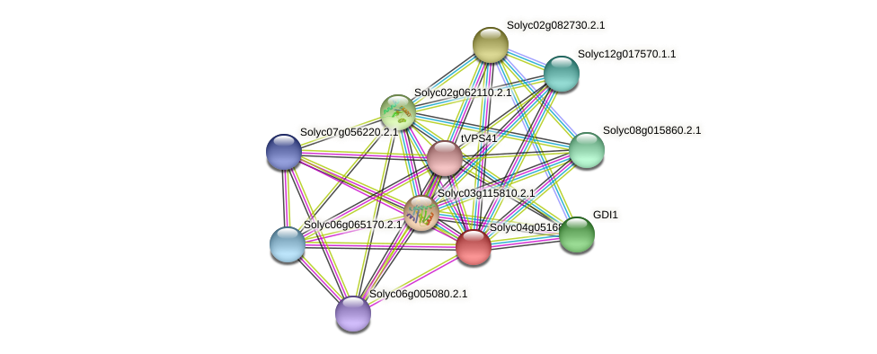Solyc04g051680.2.1 protein (Solanum lycopersicum) - STRING interaction network