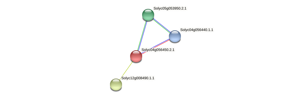 Solyc04g056450.2.1 protein (Solanum lycopersicum) - STRING interaction network