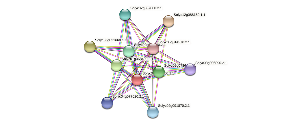Solyc04g056500.1.1 protein (Solanum lycopersicum) - STRING interaction network