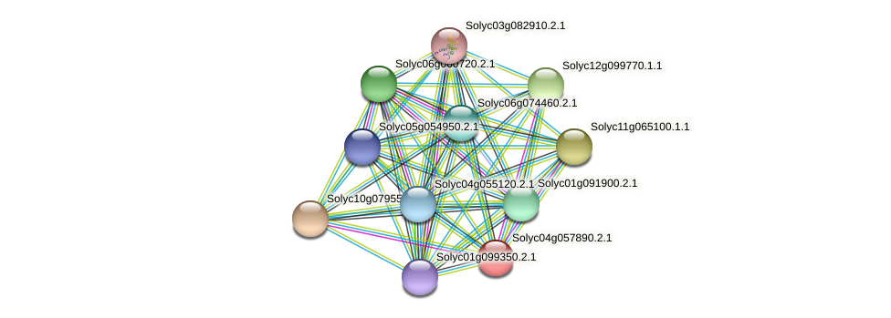 Solyc04g057890.2.1 protein (Solanum lycopersicum) - STRING interaction network