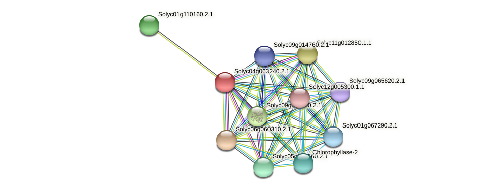 Solyc04g063240.2.1 protein (Solanum lycopersicum) - STRING interaction network