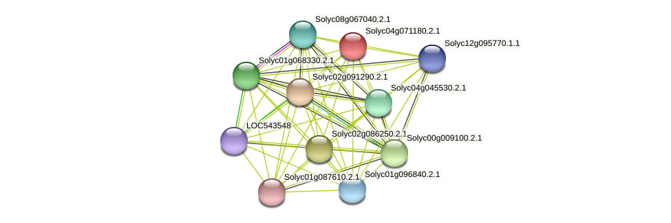 Solyc04g071180.2.1 protein (Solanum lycopersicum) - STRING interaction network