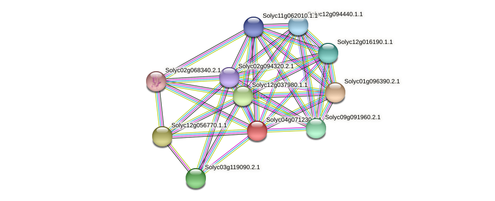 Solyc04g071230.1.1 protein (Solanum lycopersicum) - STRING interaction network