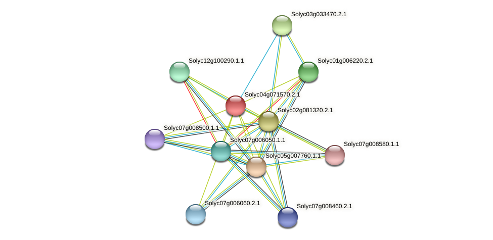 Solyc04g071570.2.1 protein (Solanum lycopersicum) - STRING interaction network