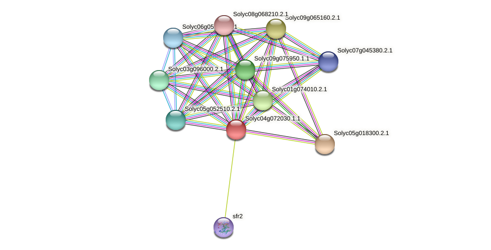101257363 protein (Solanum lycopersicum) - STRING interaction network