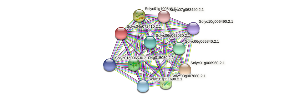101264318 protein (Solanum lycopersicum) - STRING interaction network