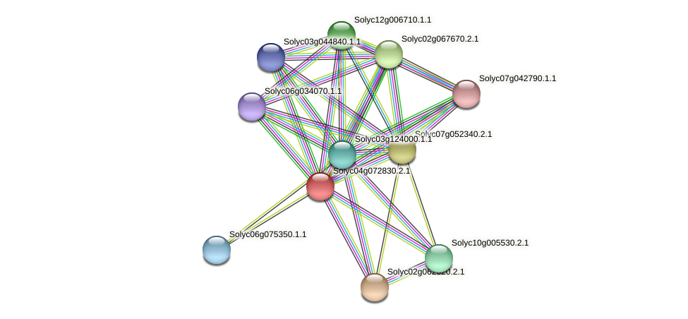 Solyc04g072830.2.1 protein (Solanum lycopersicum) - STRING interaction network