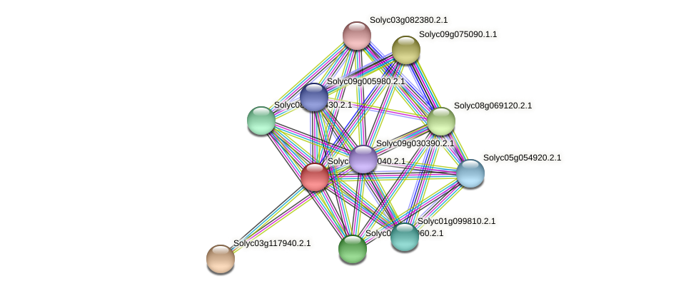 Solyc04g074040.2.1 protein (Solanum lycopersicum) - STRING interaction network