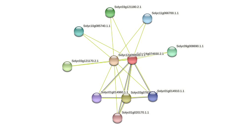 Solyc04g074930.2.1 protein (Solanum lycopersicum) - STRING interaction network