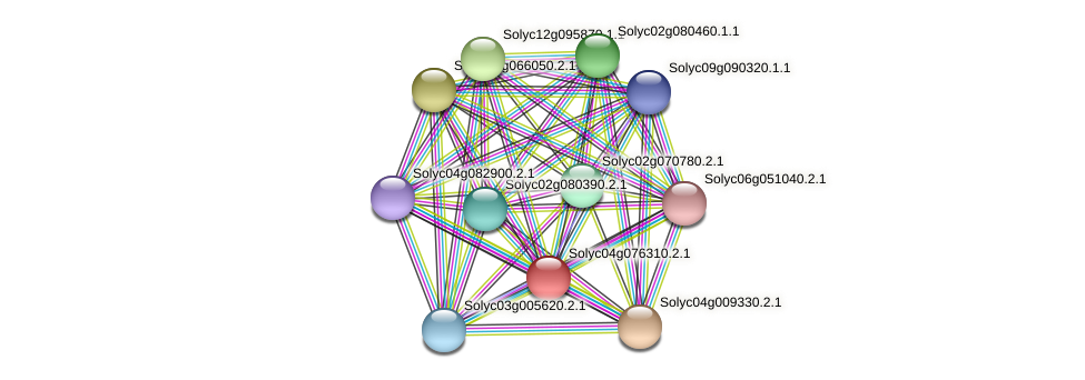 Solyc04g076310.2.1 protein (Solanum lycopersicum) - STRING interaction network