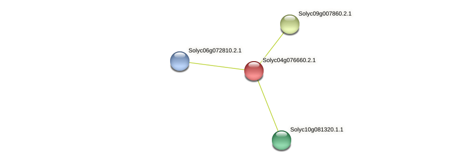 Solyc04g076660.2.1 protein (Solanum lycopersicum) - STRING interaction network