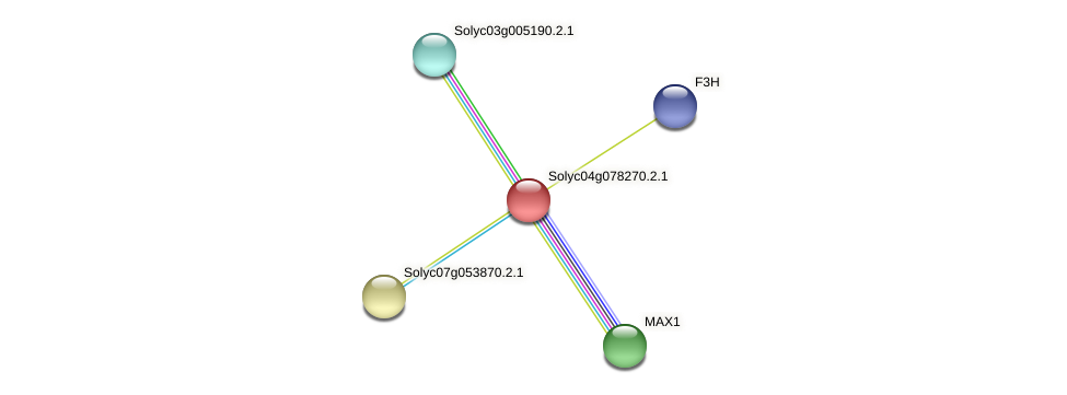 Solyc04g078270.2.1 protein (Solanum lycopersicum) - STRING interaction network