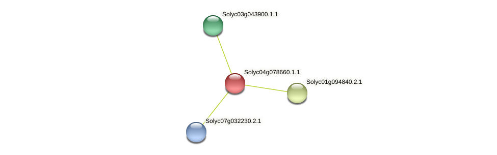 Solyc04g078660.1.1 protein (Solanum lycopersicum) - STRING interaction network
