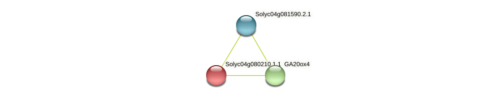 Solyc04g080210.1.1 protein (Solanum lycopersicum) - STRING interaction network