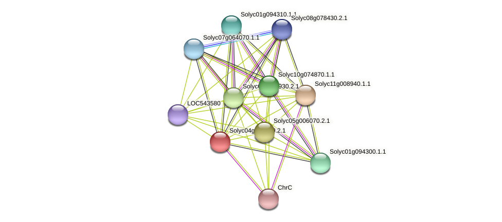 Solyc04g081950.2.1 protein (Solanum lycopersicum) - STRING interaction network