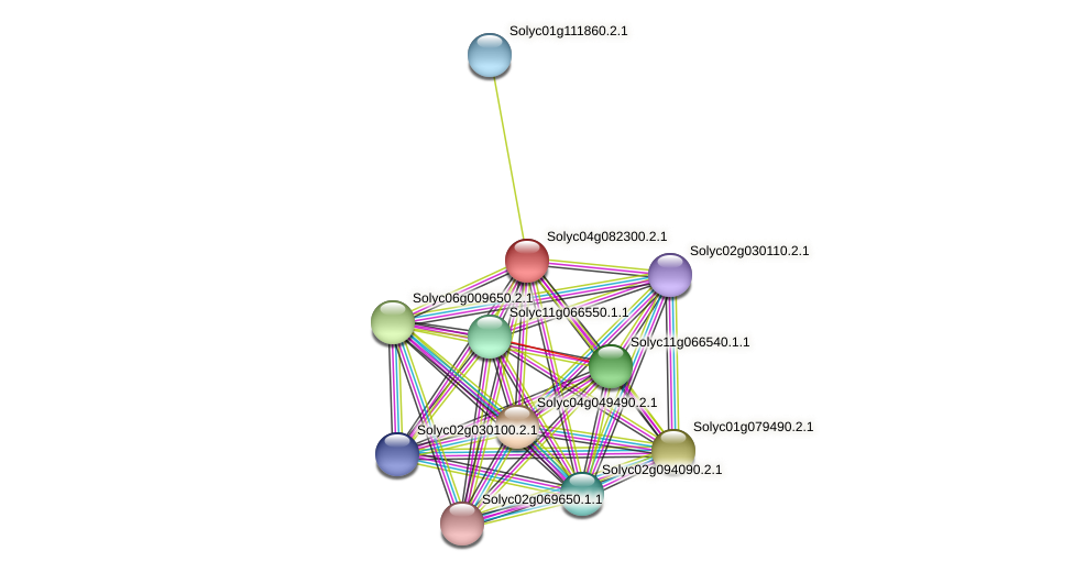 101255790 protein (Solanum lycopersicum) - STRING interaction network