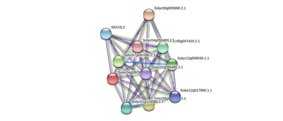 Solyc04g082980.1.1 protein (Solanum lycopersicum) - STRING interaction network