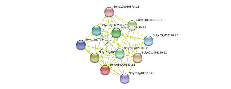 Solyc05g006580.2.1 protein (Solanum lycopersicum) - STRING interaction network