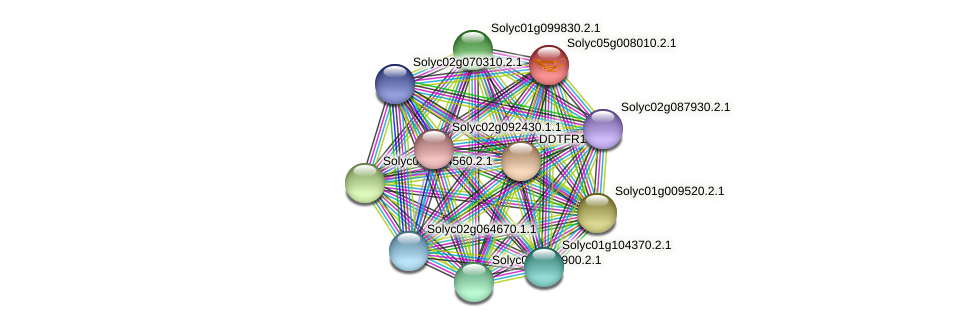 Solyc05g008010.2.1 protein (Solanum lycopersicum) - STRING interaction network