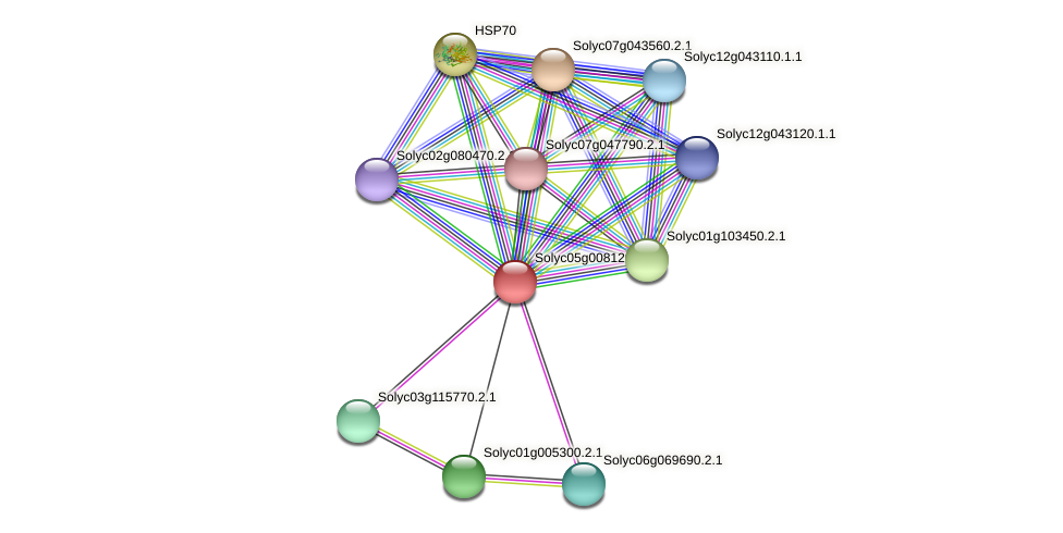 Solyc05g008120.2.1 protein (Solanum lycopersicum) - STRING interaction network